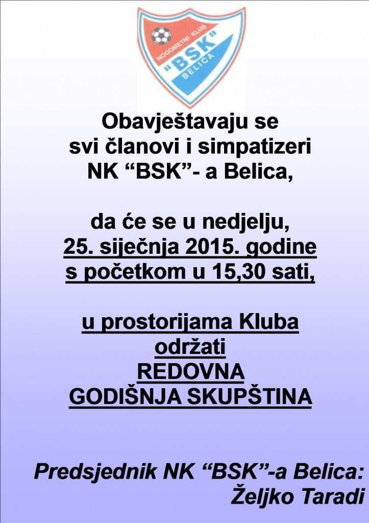 plakat bsk 2015
