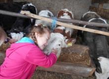Dječji vrtić Belica u posjeti OPG-u Vranović