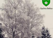Sakupljanje božićnih drvca početkom 2018. godine