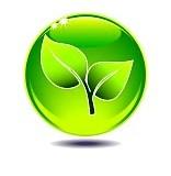 Odluka o zabrani spaljivanja otpada